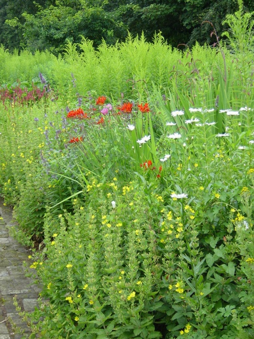 Traditional herbaceous border